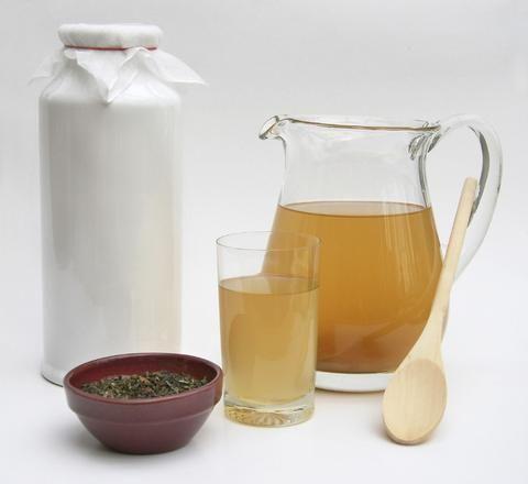 Raw Organic Kombucha Scoby Starter ○ $24.99