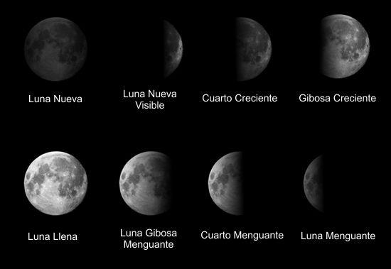 Fases de la Luna. Fases da Lúa.