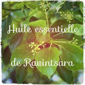 Le Ravintsara, un précieux allié pour l'hiver, recommandée aux adultes et surtout aux enfants, tant elle est bien tolérée. Antivirale, immuno-stimulante, mucolytique...