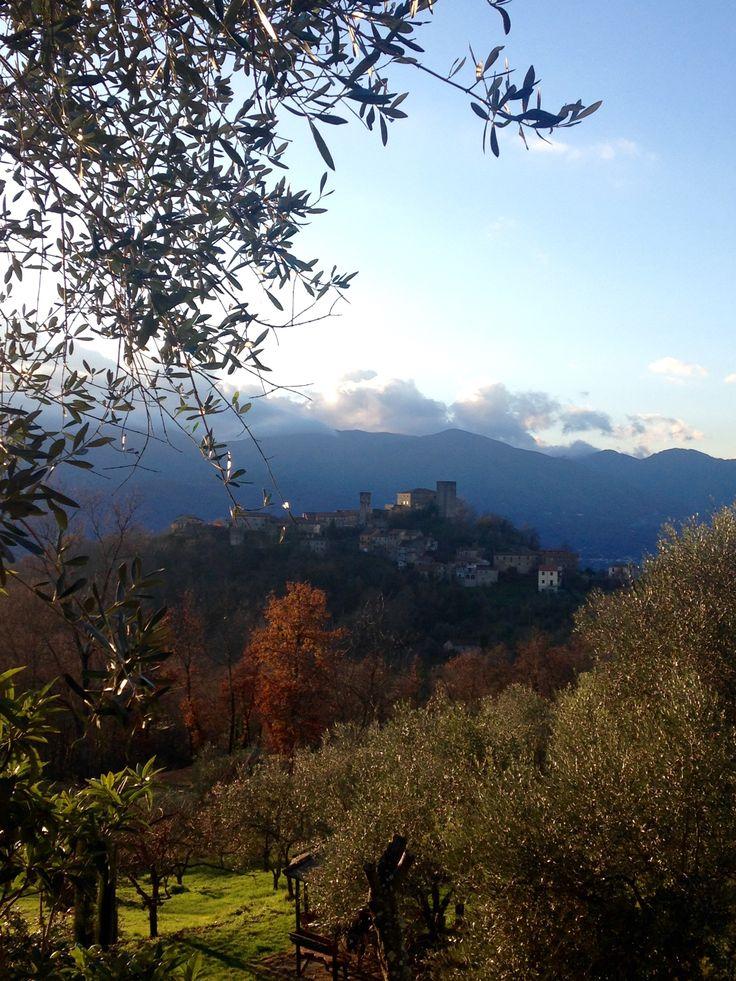 Amazing landscape in Tuscany  #winter #nature #tuscany
