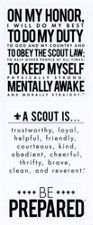 Boy Scout™ Oath, Law, and Motto Stickers