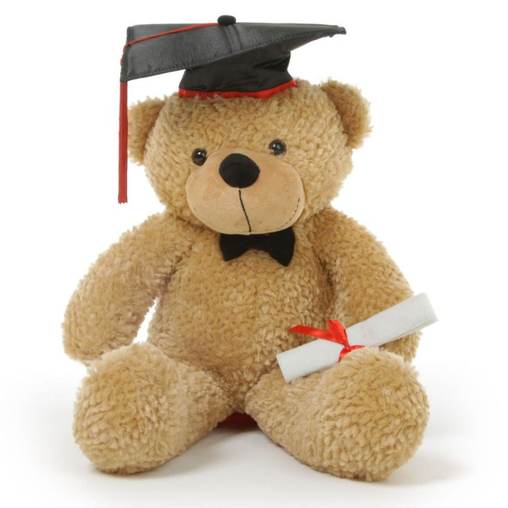 Giant Teddy  - Shaggy G Cuddles Amber Graduation Teddy Bear with Cap and Diploma 24in, $49.99 (http://www.giantteddy.com/shaggy-g-cuddles-amber-graduation-teddy-bear-with-cap-and-diploma-24in/)