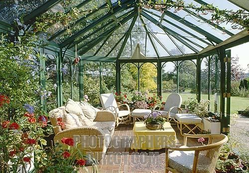 conservatory cats | UK , traditional conservatory , interior