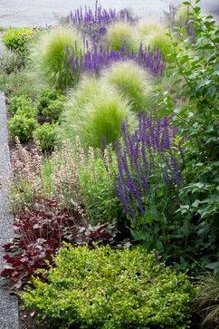 Kitsilano Front Garden contemporary-landscape