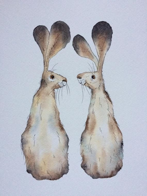 Hare card, hare greetings card, hare pair greetings card