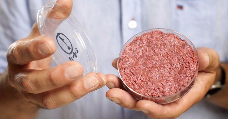 KEINOLIHA. Keinolihasta toivotaan ekologisempaa ja eettisempää vaihtoehtoa tehotuotantolihalle. Keinolihaa ei kuitenkaan pystytä valmistamaan suuria määriä vielä vuosiin.