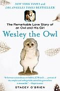 """Wesley the Owl by Stacey Obrien: Wesley the Owl andlt;link type=""""application/vnd.adobe-page-template+xml"""" rel=""""stylesheet"""" href=""""page-template.xpgt""""andgt; andlt;link rel=""""stylesheet"""" type=""""text/css"""" href=""""9781416579816.css""""andgt; andlt;BRandgt;andlt;BRandgt;andlt;h2 andgt;1andlt;/h2andgt;andlt;h2 andgt;The Way of the Owlandlt;/h2andgt;andlt;BRandgt;andlt;BRandgt;ON A RAINY Valentineand#226;and#8364;and#8482;s Day morning in 1985, I fell in love with a four-day-old barn owl…"""