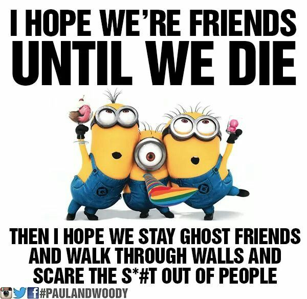 17 Best images about Minions on Pinterest | The minions ...