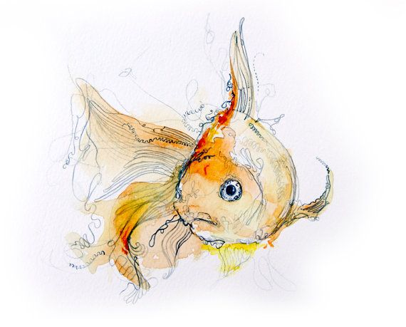 Goldfish original watercolor illustration multimedia for Watercolor fish painting