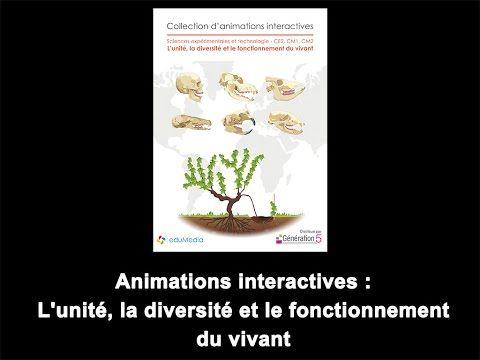Génération 5 : 6 cd d'animations en sciences ! - Le cartable de maîtresse Séverine