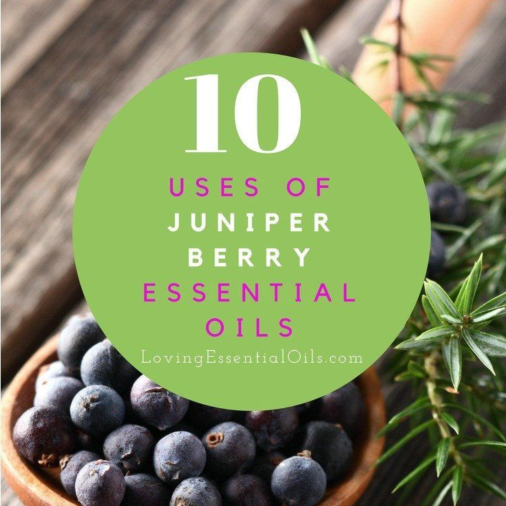 Juniper Berry Essential Oil comes from dried or fresh berries and needles of the plant.  It is known as a strong detoxifier and immune booster, naturally improv