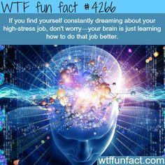 Seriously? ...a high-stress job, & Constant dreams about it? sounds more like heading toward PTSD. (Jus Say'in!...) - WTF weird & fun? facts