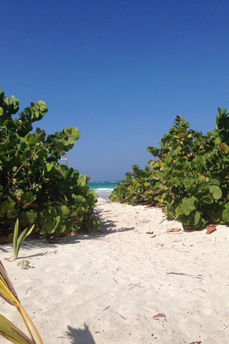 25 Best Ideas About Costa Maya On Pinterest Mexico