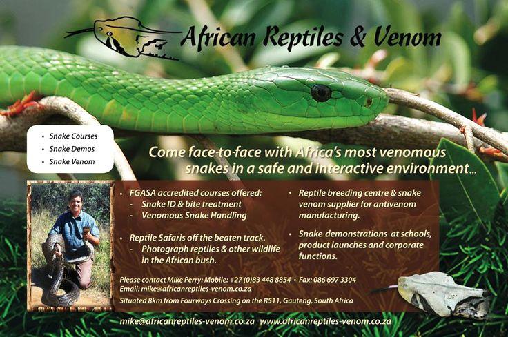 African Reptiles and Venom | Ladysmith Local Directory