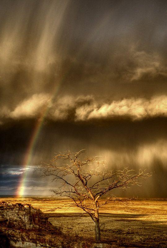 Storm and Rainbow, Petrified Forest National Park, Arizona | Massimo Strazzeri