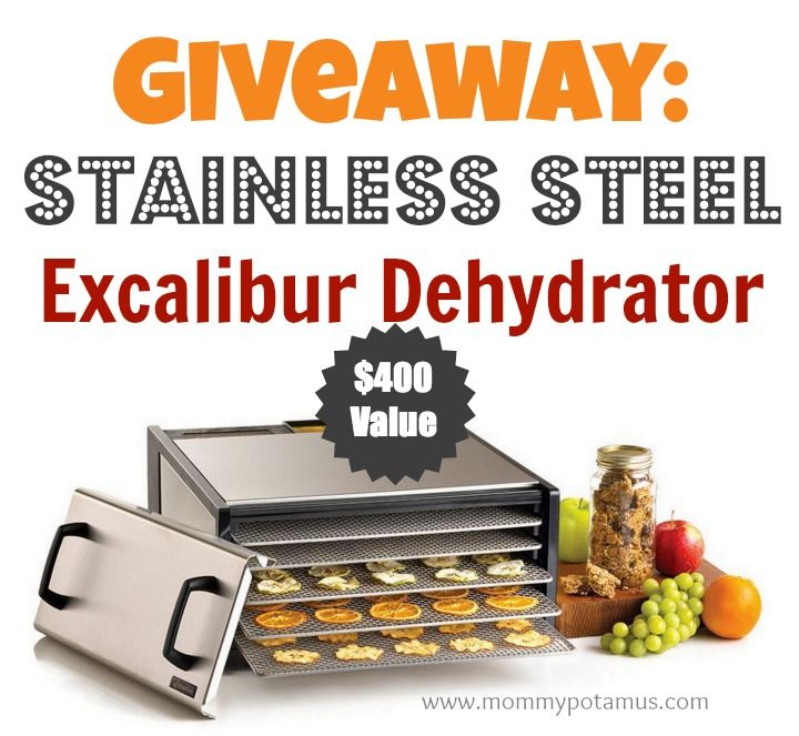 Giveaway: Stainless Steel Excalibur Dehydrator ($400 Value) | The Mommypotamus |