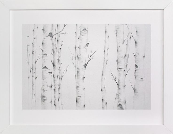 """Birch Story"" - Available in a variety of frame and size options."