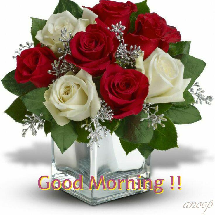 Guten Morgen, Valentinstag Blumenideen, Winterblumenarrangements,  Blumenarrangements, Winter Blumen, Einfache Blumen, Weihnachtsblumen,  Rosenblüten, ...