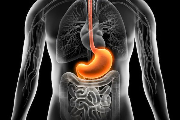 Batido natural de efecto inmediato contra la acidez estomacal  http://paraadelgazar.ws/batido-natural-de-efecto-inmediato-contra-la-acidez-estomacal/ Salud y Bienestar