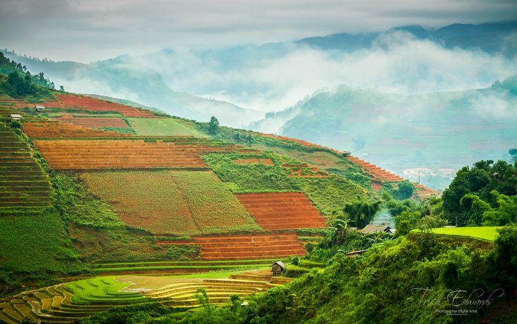 https://flic.kr/p/HcWvAz | Misty morning amongst the terraces | Mu Cang Chai Vietnam