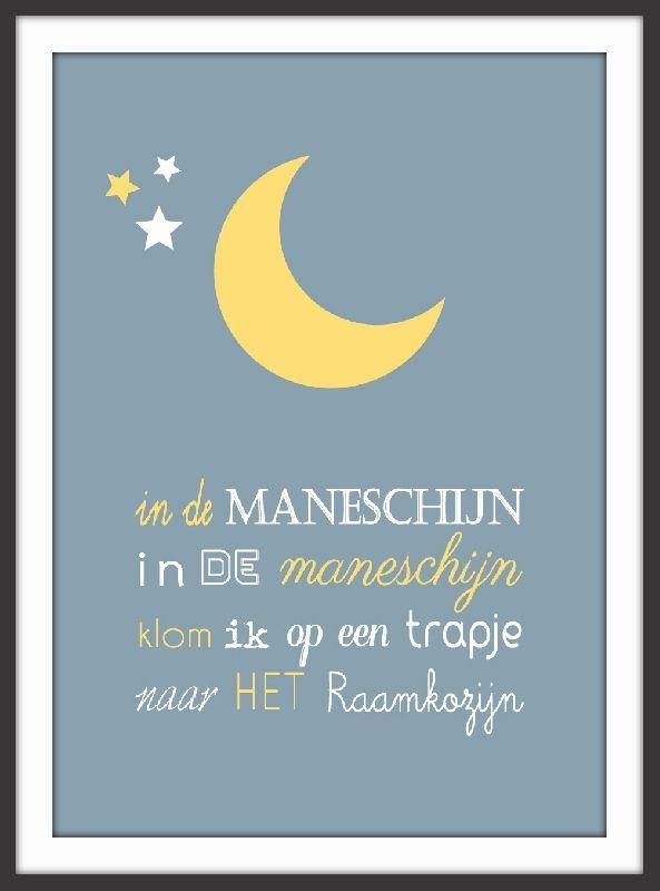 Poster Maneschijn