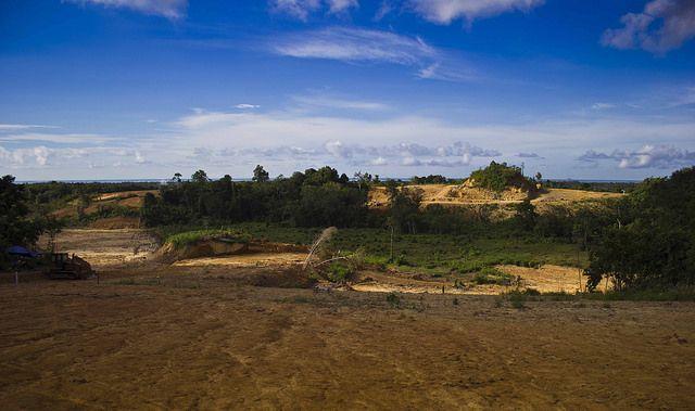 Hutan Gundul - Balikpapan