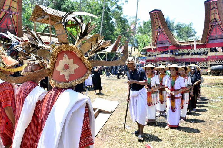 Salah satu acara dalam ritual Rambu Solo adalah Mantarima Tamu atau prosesi penerimaan tamu dalam ritual adat Toraja, Sulawesi Selatan. Mereka datang dari marga-marga atau tamu dari luar, biasanya membawa kerbau, babi atau uang untuk diberikan bagi keluarga yang berduka. Foto : Wahyu Chandra