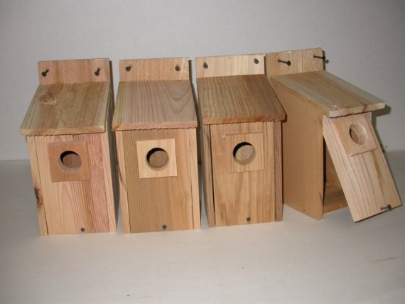 12 best images about bluebird houses on pinterest purple for Martin house designs