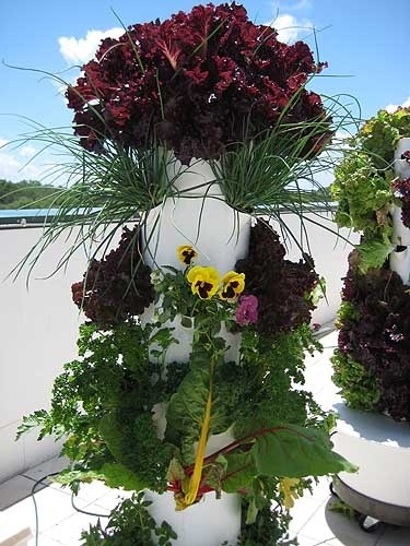 Tower Gardens Iu0027m Getting This For My Deck! Vertical Gardening Love It