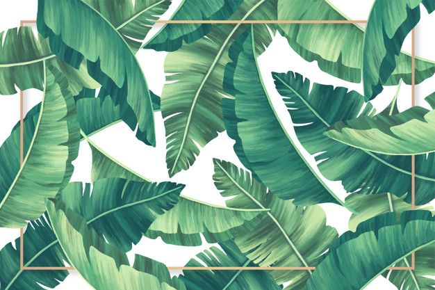 Download Tropical Leaves Background With Golden Frame For Free Leaf Background Tropical Flowers Illustration Palm Background
