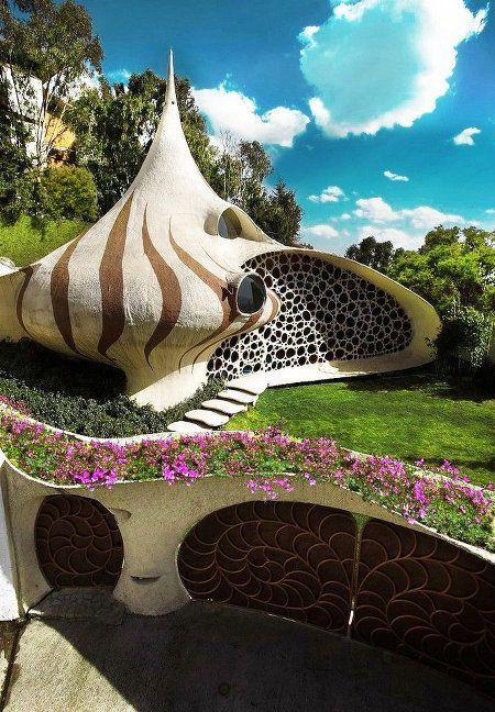 Органическая архитектура дома-ракушки