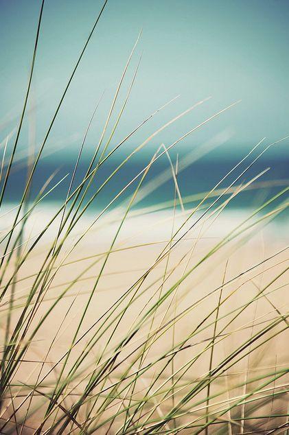 ..bølgene strår mot stranden og stråene vaier i vinden.