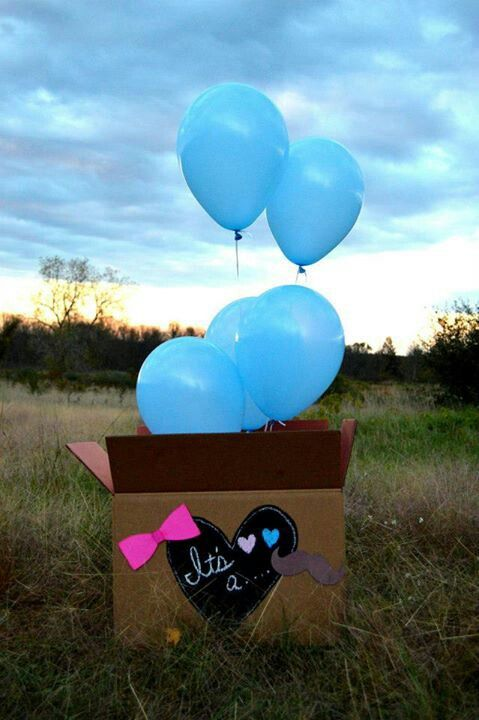 Gender reveal ballons boy girl blue pink in a box