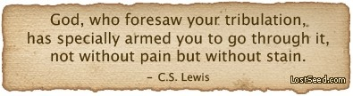 C.S. LewisLewis Quotes, Inspiration, Religious Quotes, Faith, Pain Quotes, Christian Quotes, Favorite Quotes, Cs Lewis, Jesus Love