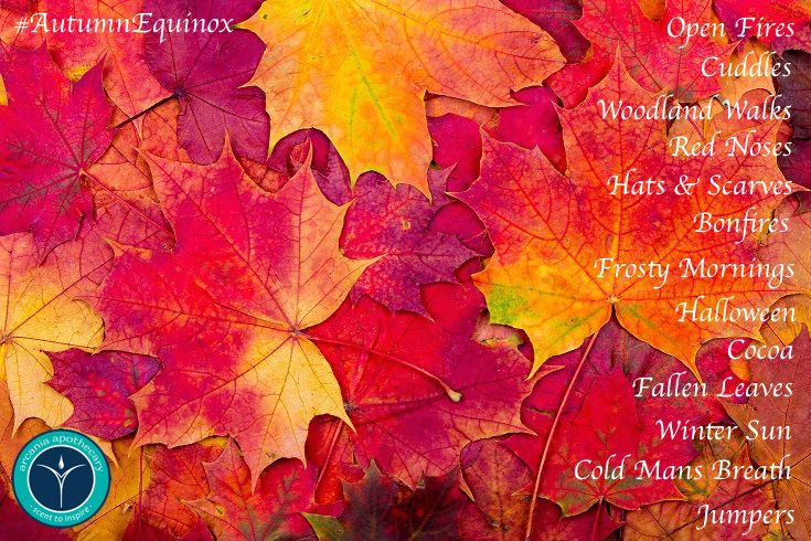 Happy #AutumnEquinox 🍂☕🎃🍁 This is what #Autumn means to us, what does it mean to you?#LoveAutumn #Equinox #OpenFires #Cuddles #WoodlandWalks #RedNoses #Bonfires #FrostyMornings #Halloween #Cocoa #FallenLeaves #WinterSun #ColdMansBreath #Jumpers #RedLeaves #Colourful #Beautiful #Seasons #BreathTaking #Smiles #PositiveVibes #ScentToInspire