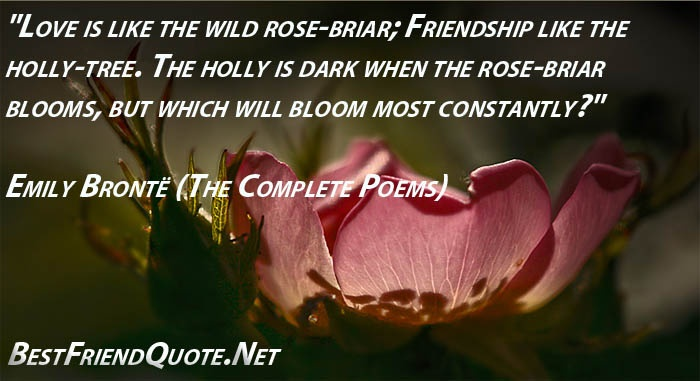 """27 Best Love For The Wild Quotes Images On Pinterest: """"Love Is Like The Wild Rose-briar; Friendship Like The"""