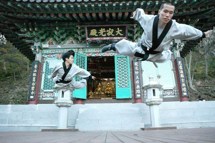 Flying martial artists - Korean Sunmudo masters