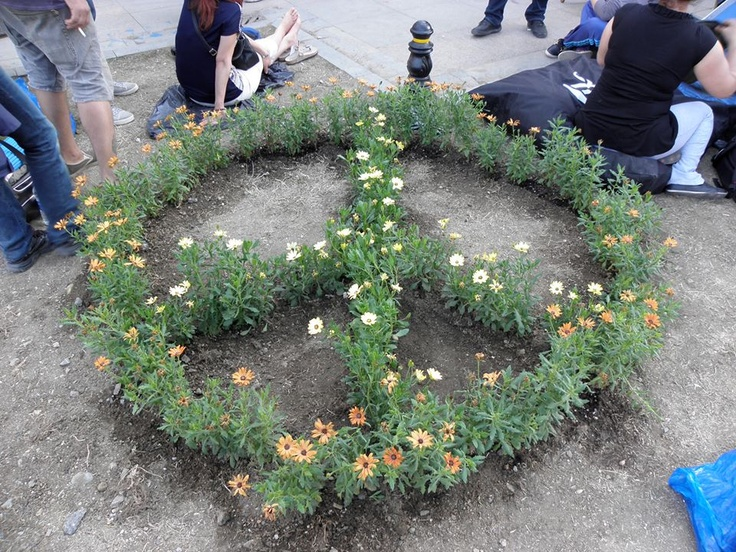 garden at gezi park  we made it #occupyTurkey #direnGezi #occupygezi #turkey #occupytaksim #direngeziparkı #occupyturkey #Chapulling