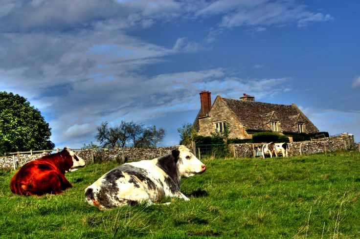 2013 Pastoral setting in England's Cotswolds