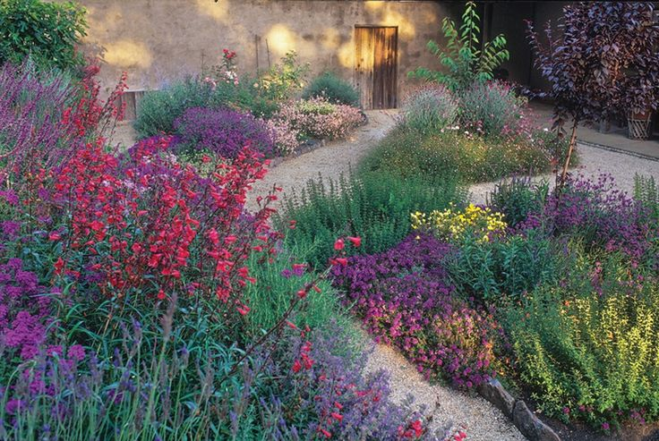 Drought tolerant perennial garden. This shows what is possible with color in this type of garden.