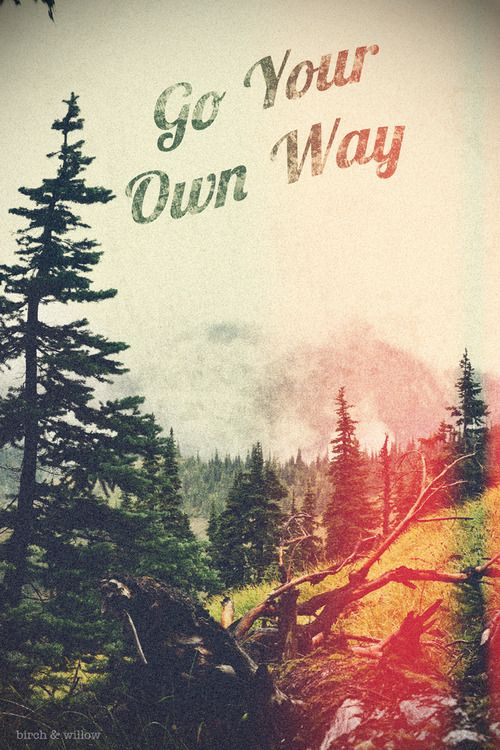 go your own way <<>> birch & willow