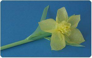DIY crepe paper daffodil - great directions