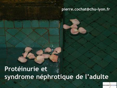 syndrome néphrotique de l'adulte