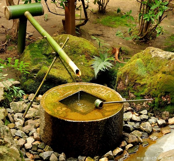 Caractéristiques de l'eau asiatique