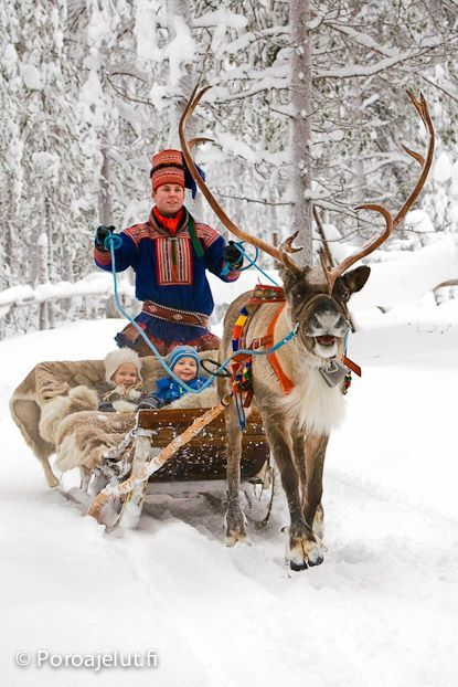 I am fairly obsessed with reindeer, even more so since I found out my great-grandfather's family were reindeer herders.  :-)