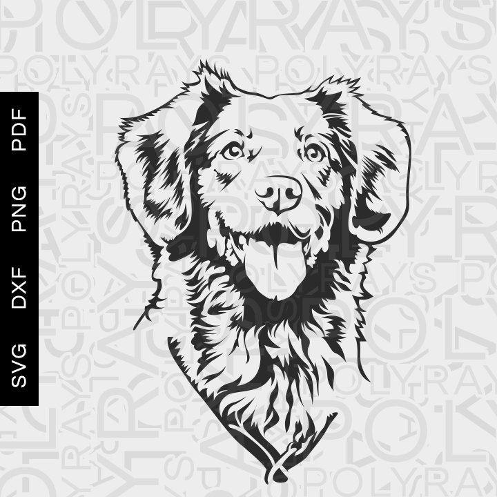 Perro Abrigo Sandía Talla 10 hinchados diseñado por Stinky G Londres-pequeño perro