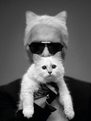 Karl Lagerfeld & Choupette(´◡`♥)Fashion Design, Choupette, Harpers Bazaars, Karl Lagerfeld, Cat Lovers, Kitty, Cat Ears, Cat Lady, Karl Lagerfeld