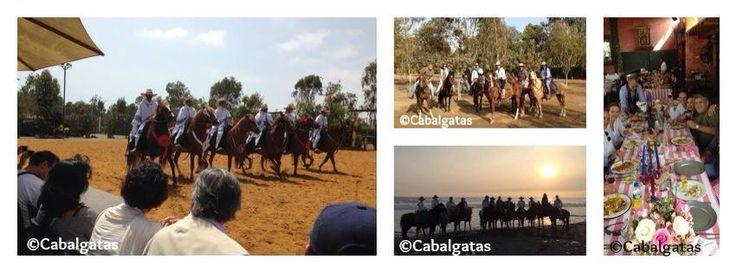 ¡PROMOCION 10% de descuento! Full day de cabalgatas + show + almuerzo en la Hacienda Mamacona Domingo 11 de enero Salida 10:30 am - regreso 4:30 pm Información y reserva : informes@cabalgatas.com.pe o #975349004