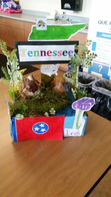 THE STATE OF TENNESSEE'S STUDENT/TEACHER ACHIEVEMENT …