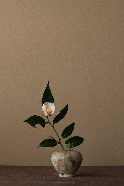 ikebana - japanese flower arrangement, involves the art of flowers and the space around them